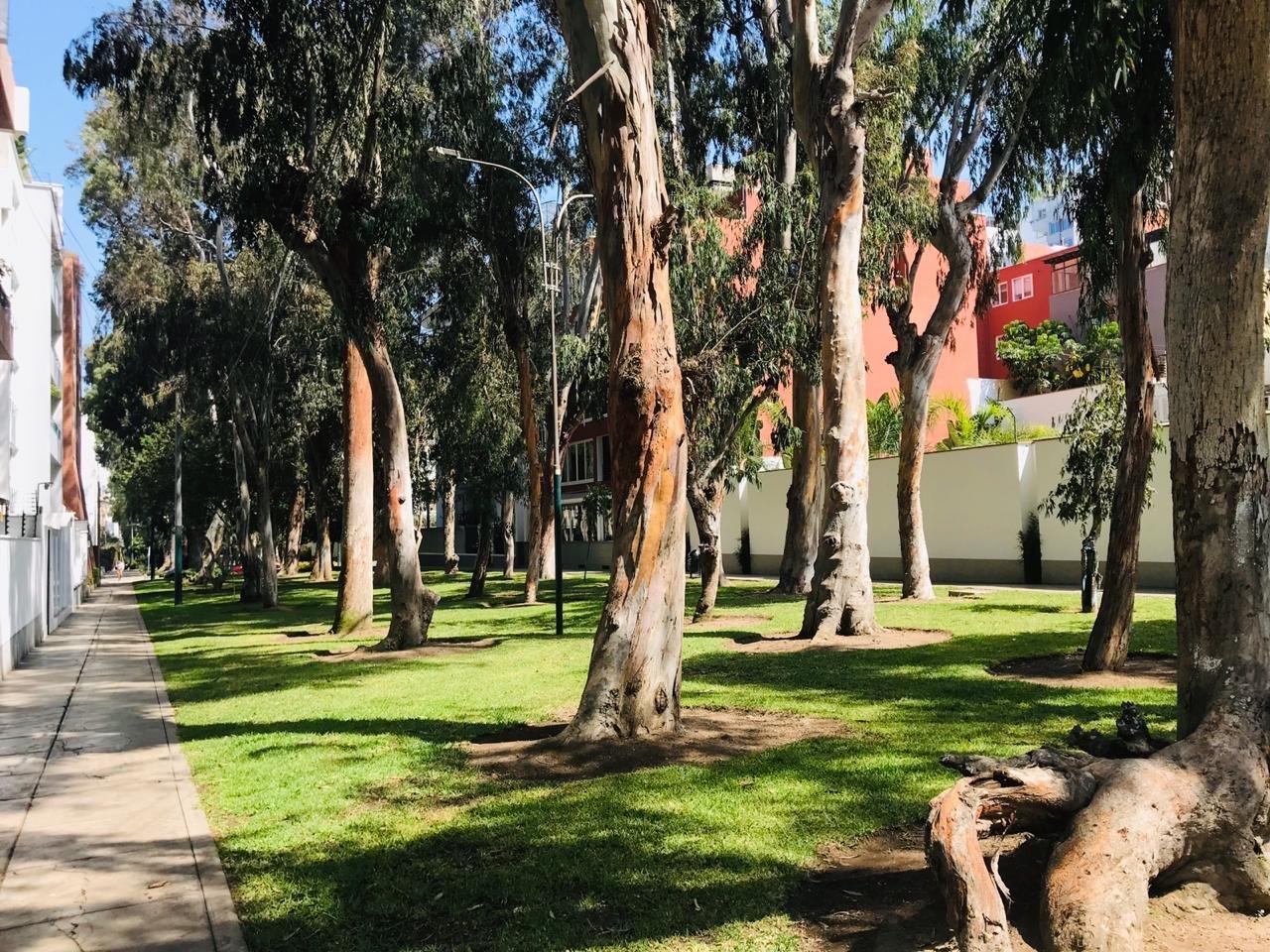 ALQUILER DE DEPARTAMENTO FRENTE A BOULEVARD ROOSEVELT– SAN ISIDRO US$ 1,800